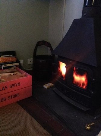 Plas Gwyn B&B & Cottage: Lovely Log burner to come back to!