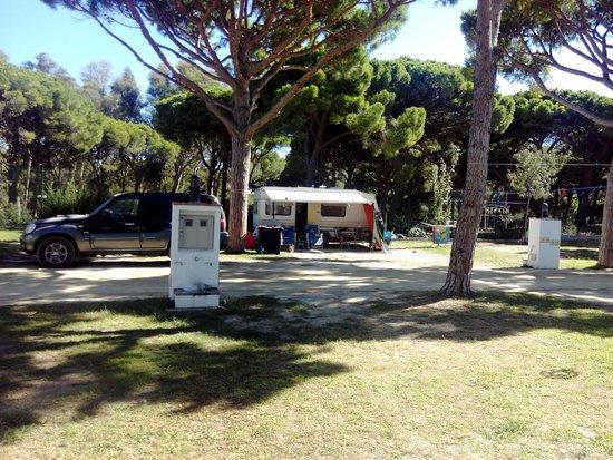 Camping Pinar San José: Parcela