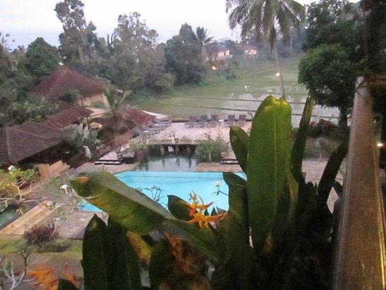Cempaka Belimbing Villas: Vistas desde el cenador