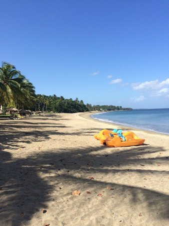 Turtle Beach by Rex Resorts : Miles of sandy beaches