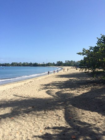 Turtle Beach by Rex Resorts : Right on your doorstep