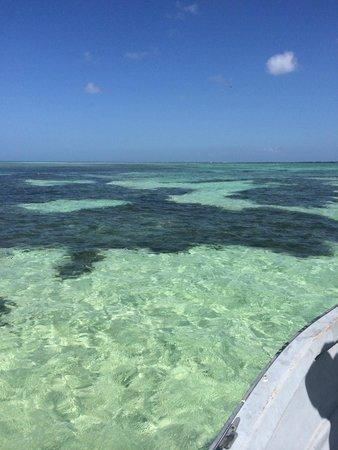 Turtle Beach by Rex Resorts : Tobago is gorgeous