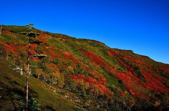 赤岳銀泉台, 青空とのコントラストが美しい