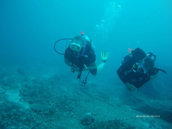 Indepth Dive College: Learning to dive at Phi Phi