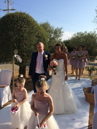 Casal Santa Eulalia : Coming down the aisle in the Olive Grove