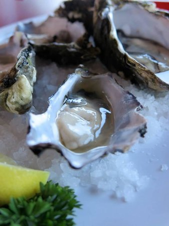 Cicerello's: Fresh oysters with lemon and tabasco sauce