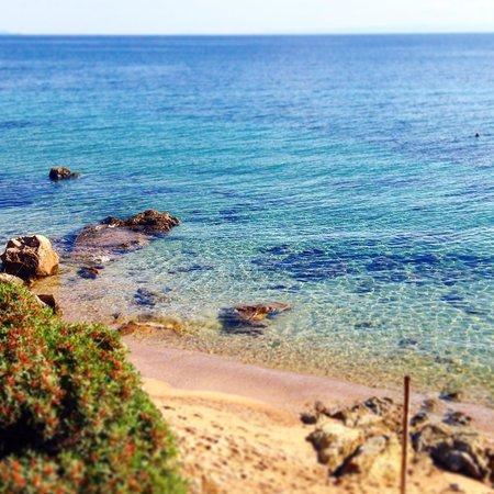 Blue Dolphin Hotel: Der Strand