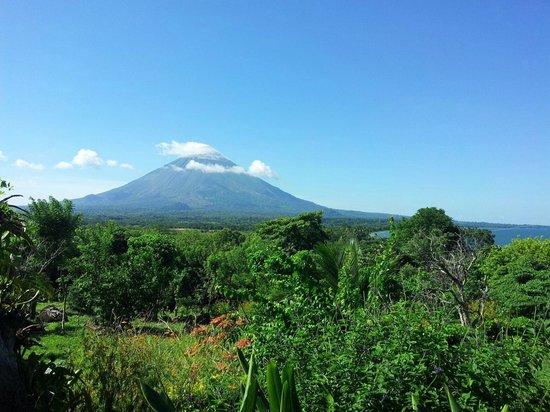 Santa Cruz Hostel & Restaurant: Ausblick auf den Vulkan Conception