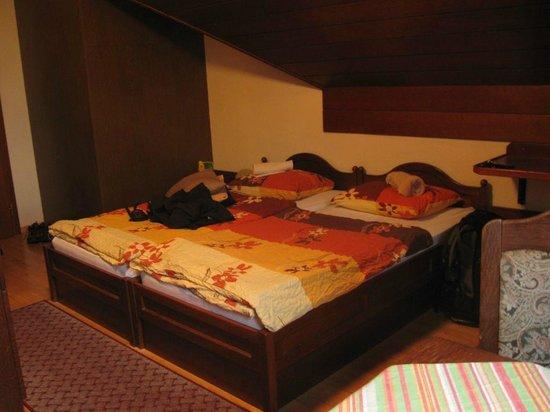 Bledec Youth Hostel: Room
