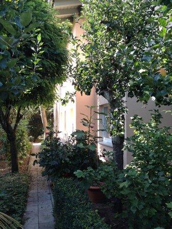 Apartmenthaus Potsdam-Quartett: Path to Main house