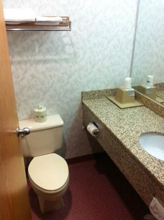 Super 8 LaGrande : bathroom, partially updated