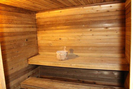 Howard Johnson Inn Woodstock NB: Sauna