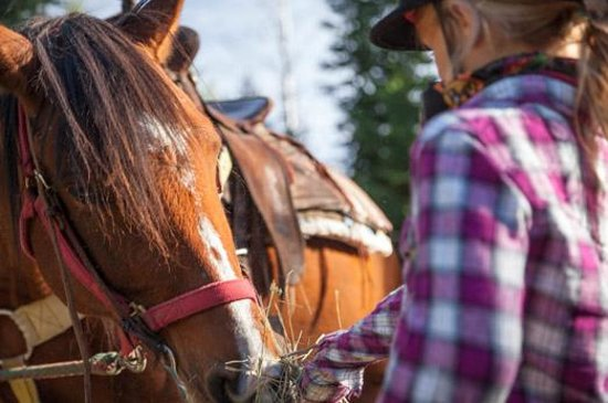 Golden, Canada: Horseback riding for all levels of ability.