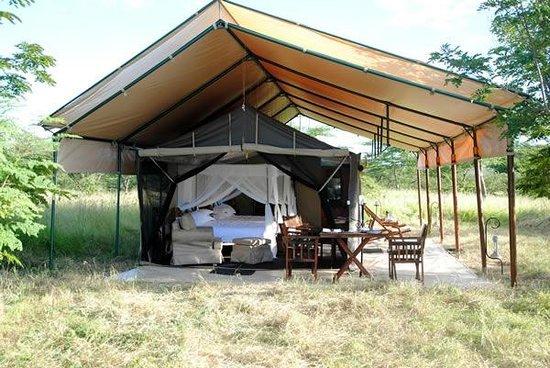 Serengeti Tanzania Bush C&s Tent front from outside & Tent front from outside - Picture of Serengeti Tanzania Bush Camps ...