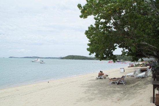 Fair House Beach Resort & Hotel : The hotel beach right on our doorstep