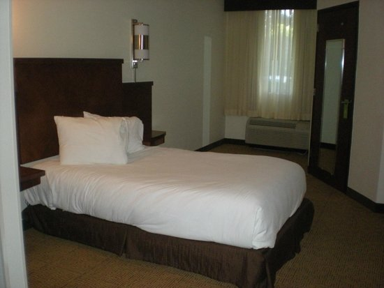 Hyatt Place Ft. Lauderdale 17th Street Convention Center: Bed in handicap accessible room 104