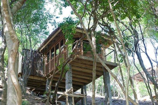 Petit St. Vincent Resort : Tree Top Spa- Massage room
