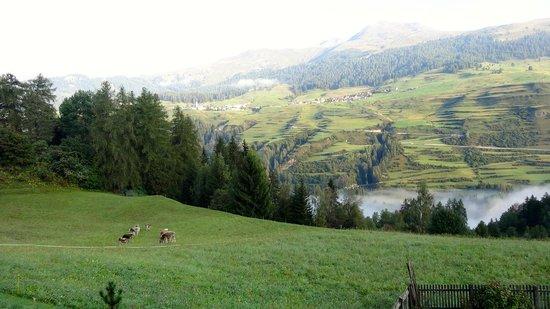Schlosshotel Chaste: The countryside