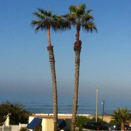 Huntington Surf Inn: The view