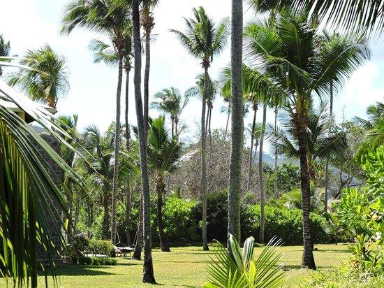 Kempinski Seychelles Resort : Vista desde la habitación