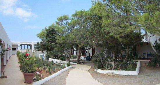 Hostal La Torre: The Garden