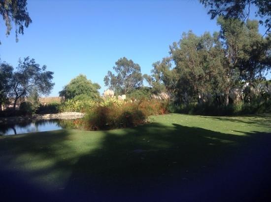 Hotel Almenara Resort: view from 513