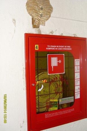 Villa Soligo Hotel: Uscita dell'ascensore al piano della spa