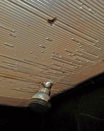 Hotel Tayka de Sal: soffitto del bagno: una lamiera di plastica ammuffita