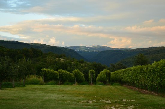 Agriturismo Delo Relais: The view from the parking area