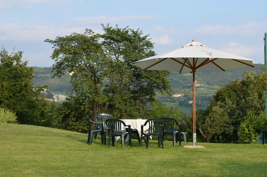Agriturismo Delo Relais: Sipping wine amidst the scenery