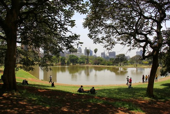 Central Park : A broad view of the lake