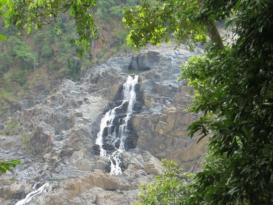 Down Under Tours - Day Tours : Baron Falls in Kuranda
