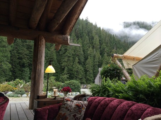 Clayoquot Wilderness Resort: View from the Cook House