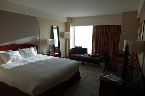 Hilton Boston Logan Airport: My very comfortable, spacious room