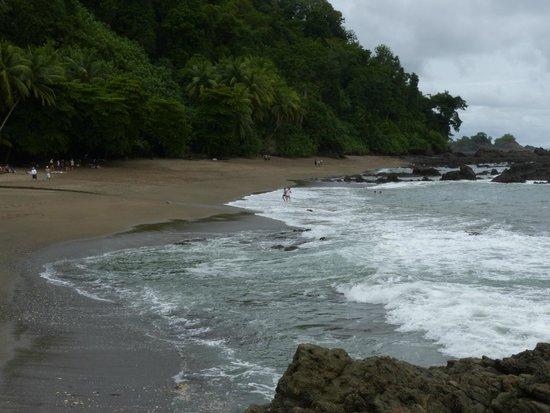 Drake Bay, Costa Rica: R.B. Isla del Caño