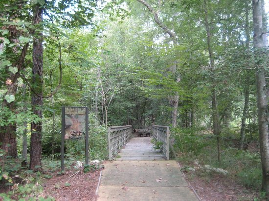 SFA Interpretive Trail