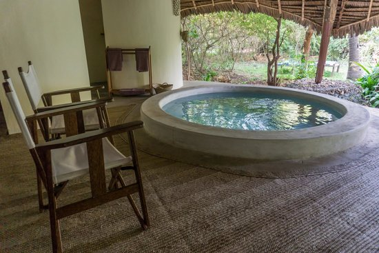 Unguja Lodge: Lodge Plunge Pool
