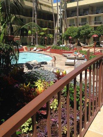 Los Angeles Airport Marriott: piscine2
