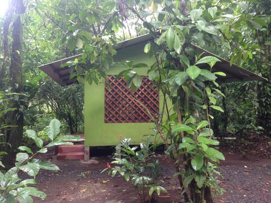 Toucan & Tarpon: One of the cabins