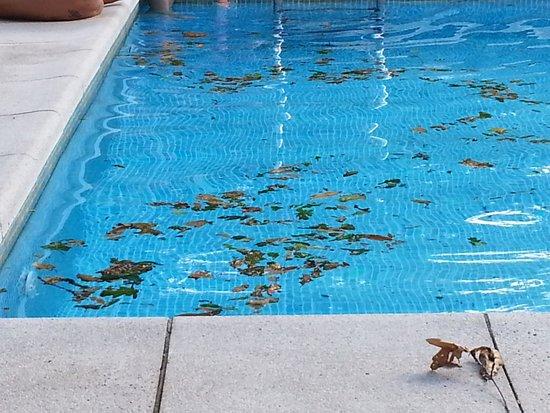 Hotel Torres de Somo: asi estaba esta tarde la piscina!