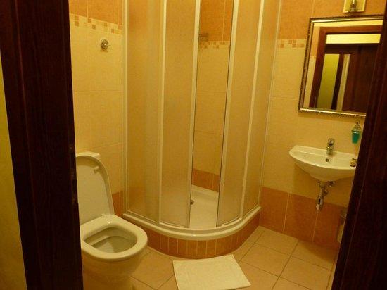 Hotel Karlstejn: Dusche WC