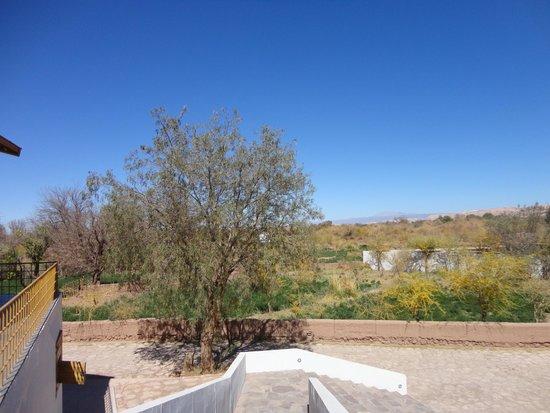 explora Atacama: Vista do apartamento