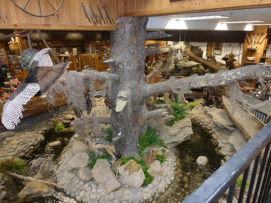 "Smoky Mountain Knife Works Water & Indoor ""tree"""