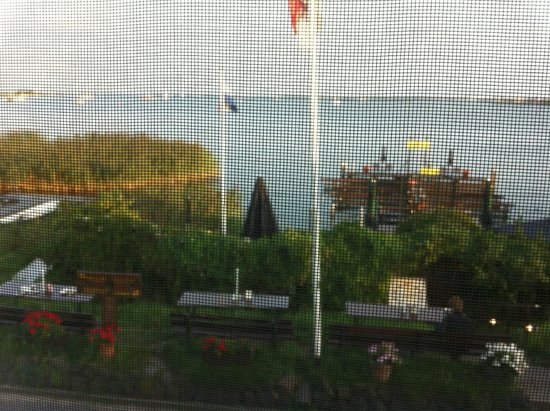 Amsterdam Village Hotel: View marred by wire mesh covering window.