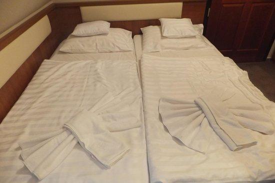 Hotel Oliva : room
