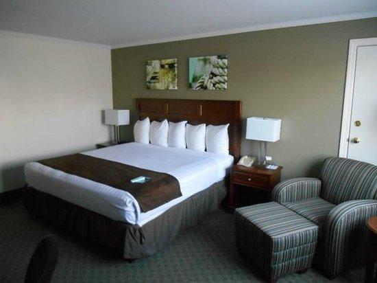 Best Western Adams Inn Quincy-Boston: Kingsize-Bett