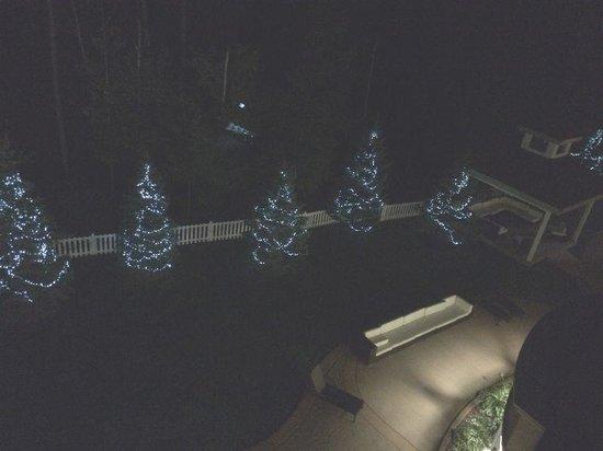 """Hilton Garden Inn Niagara-on-the-Lake: 夜間にライトがついた""""もみの木"""""""