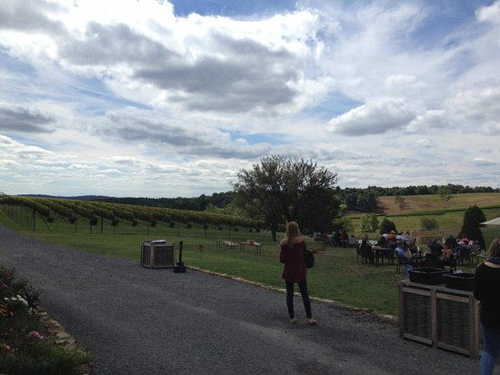 Stone Tower Winery: view 2