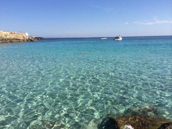 Picture of cala azzurra isola di favignana tripadvisor for Culla azzurra