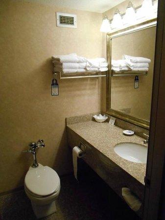 Best Western Plus Portsmouth Hotel & Suites: Bad mit Ablagefläche